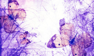 the_lost_butterflies_by_haunted_shadows17 resize3